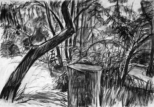Der alte Garten 1