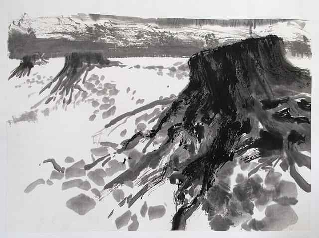 Malbuch Dornröschen