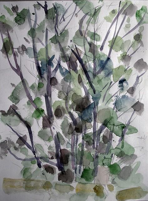 Bäume II / Ferrano