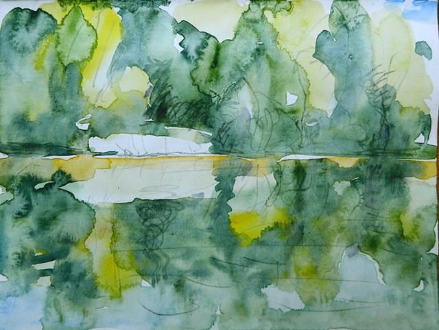 Wasserlilien am Helliden