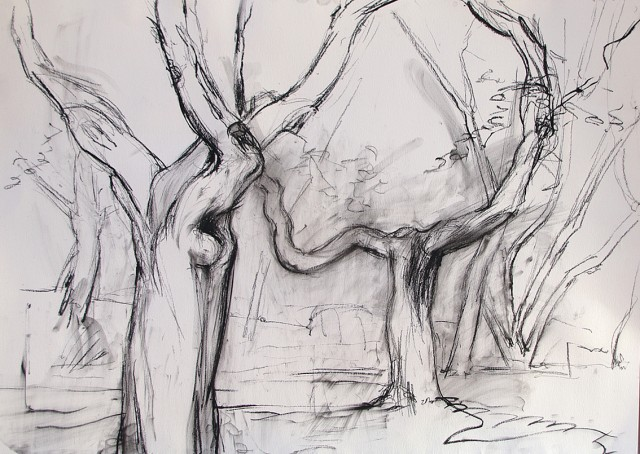 Anita Voigt - Alte Bäume von Ferrano