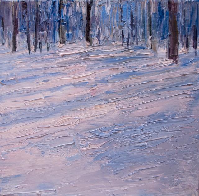 Moritzburger Wald im Januar