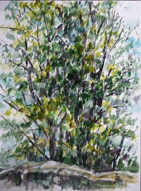 Anita Voigt: Bäume I / Ferrano