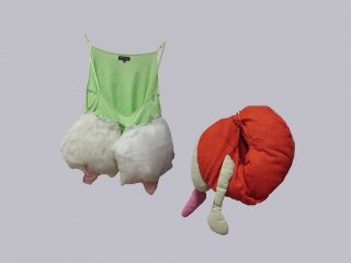 Alexandra Fly Projekt- Skulpturen-Kostüme, Alexandra Holownia