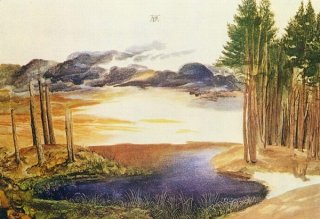 Weiher im Walde, Albrecht Dürer