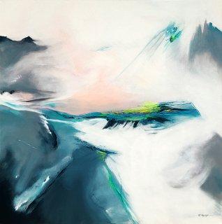 Licht der Gletscher, Willi Mayerhofer